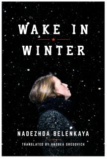 wake-in-winter-cover